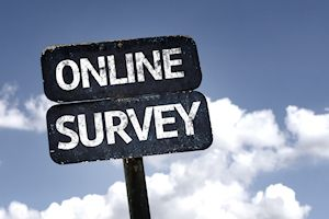 Sign reading Online Survey against blue sky and clouds